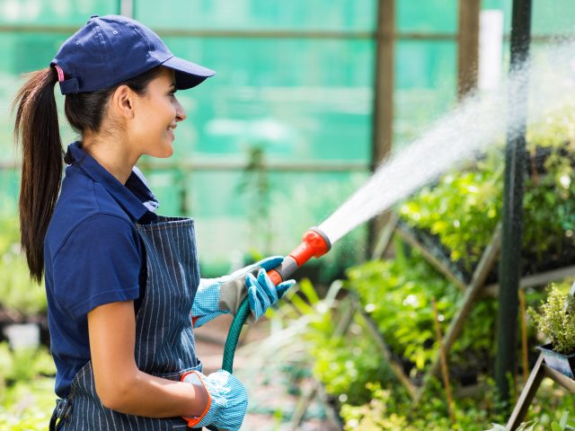 jardinerie arrosage